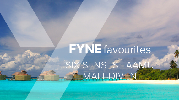 FYNE Travel Festive Offer Malediven